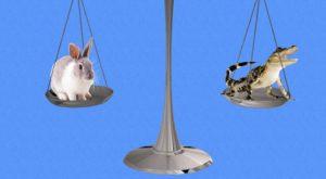 Доводы против претензий потребителей: какие сработают, а какие нет
