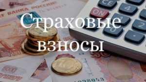 Правила применения пониженных тарифов страховых взносов субъектами МСП