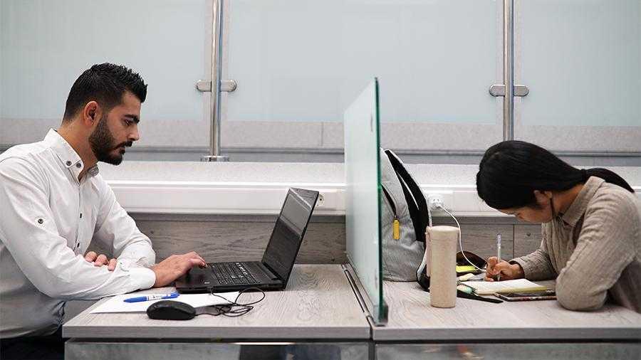 Иностранные студенты смогут работать без разрешений на работу