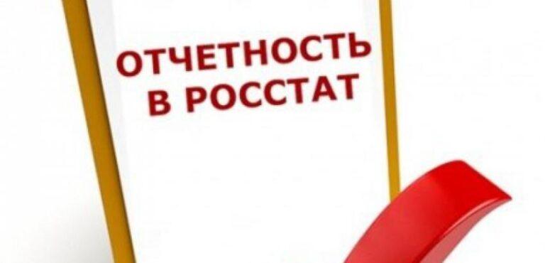 Дополнительные отчеты в Росстат МСП за 2020 год